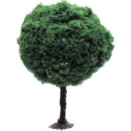 Drzewo parkowe